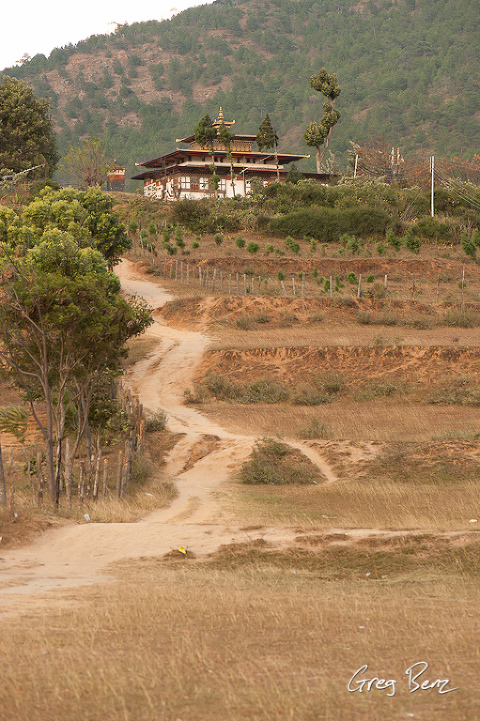Chimi Lhakhang (Divine Madman's Temple)