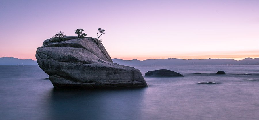 Bonzai and the Tranquility of Tahoe