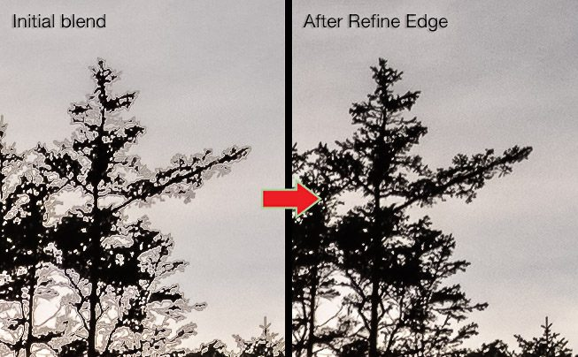 Refine Edge to fix trees in Photoshop