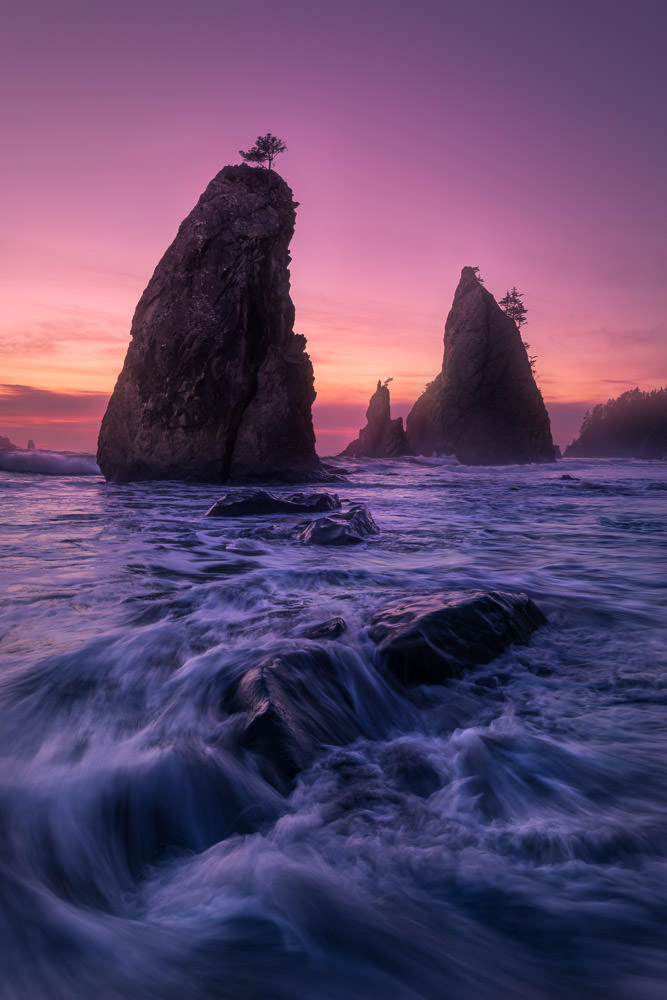 The Now Destroyed Sea Stacks at Rialto Beach in Olympic National Park